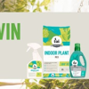 Win an Indoor Plant Pack