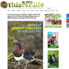 Win 1 of 3 copies of travel guide The 50 Best Birdwatching Sites in New Zealand