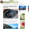 Win an overnight Pohatu Penguin experience for two on Banks Peninsula